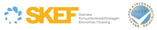 Bild på logo från SKEF