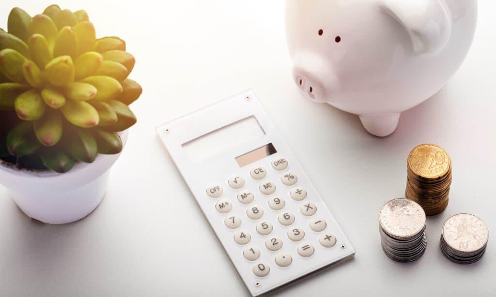 En växt, en miniräknare, mynt och en spargris.