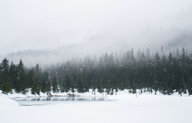 Ett vinterlandskap.